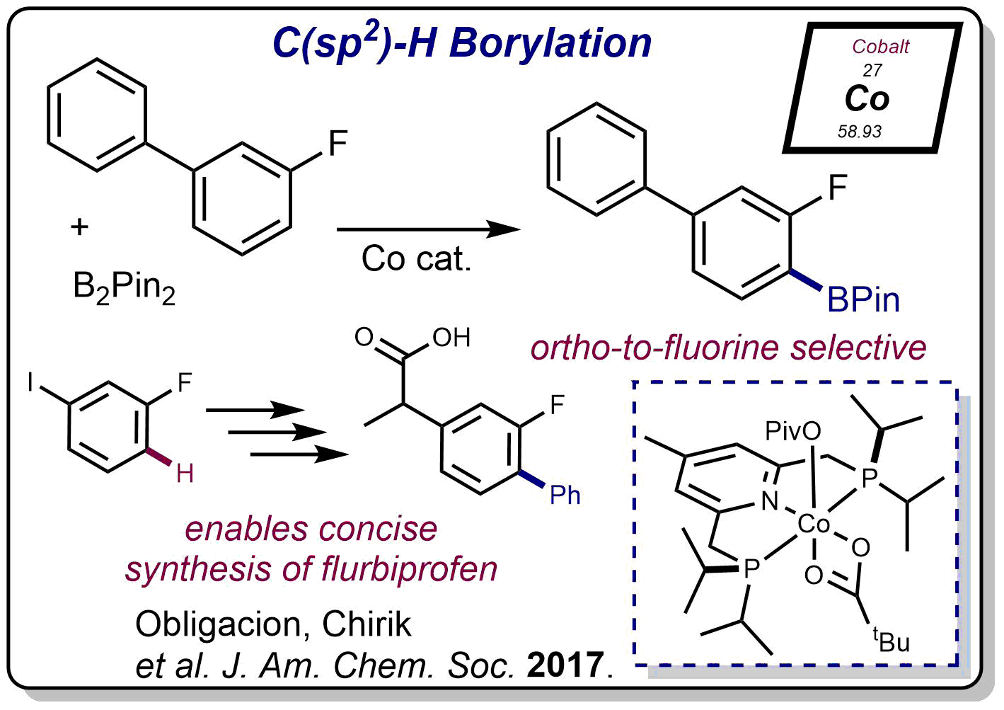 Co_sp2-borylation_Jenny