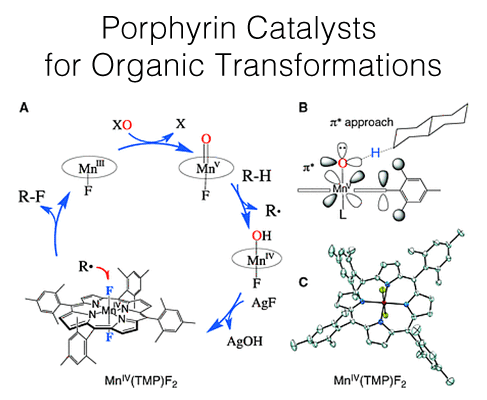 porphyrin-catalysts-for-organic-transformations-487x400
